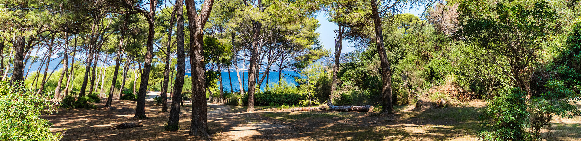 camping-olbia-tarifs-reservation-1920xauto_0_1